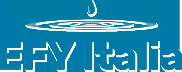 EFY-logo-2021-sticky